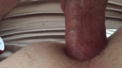 Butt Breeding, In & Out Anal Close Up