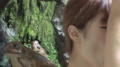 Babe Asian Blow Job In The Hotspring